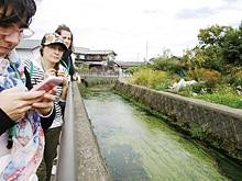【滋賀県高島市】 針江生水の郷(はりえしょうずのさと)