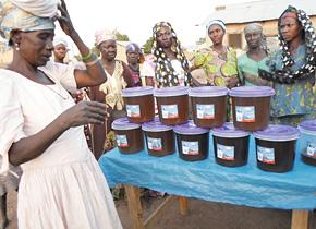 ガーナ産業振興研修の参加者の活動のようす