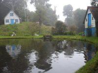 鱒の養殖と釣場とレストランを経営する農家