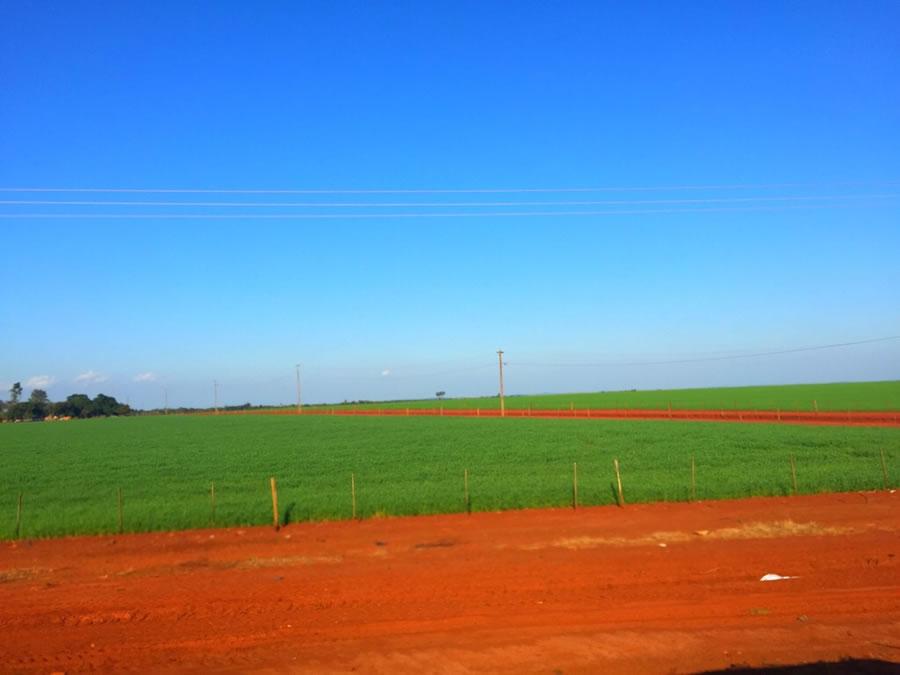 パラグアイの青空と赤土の大地